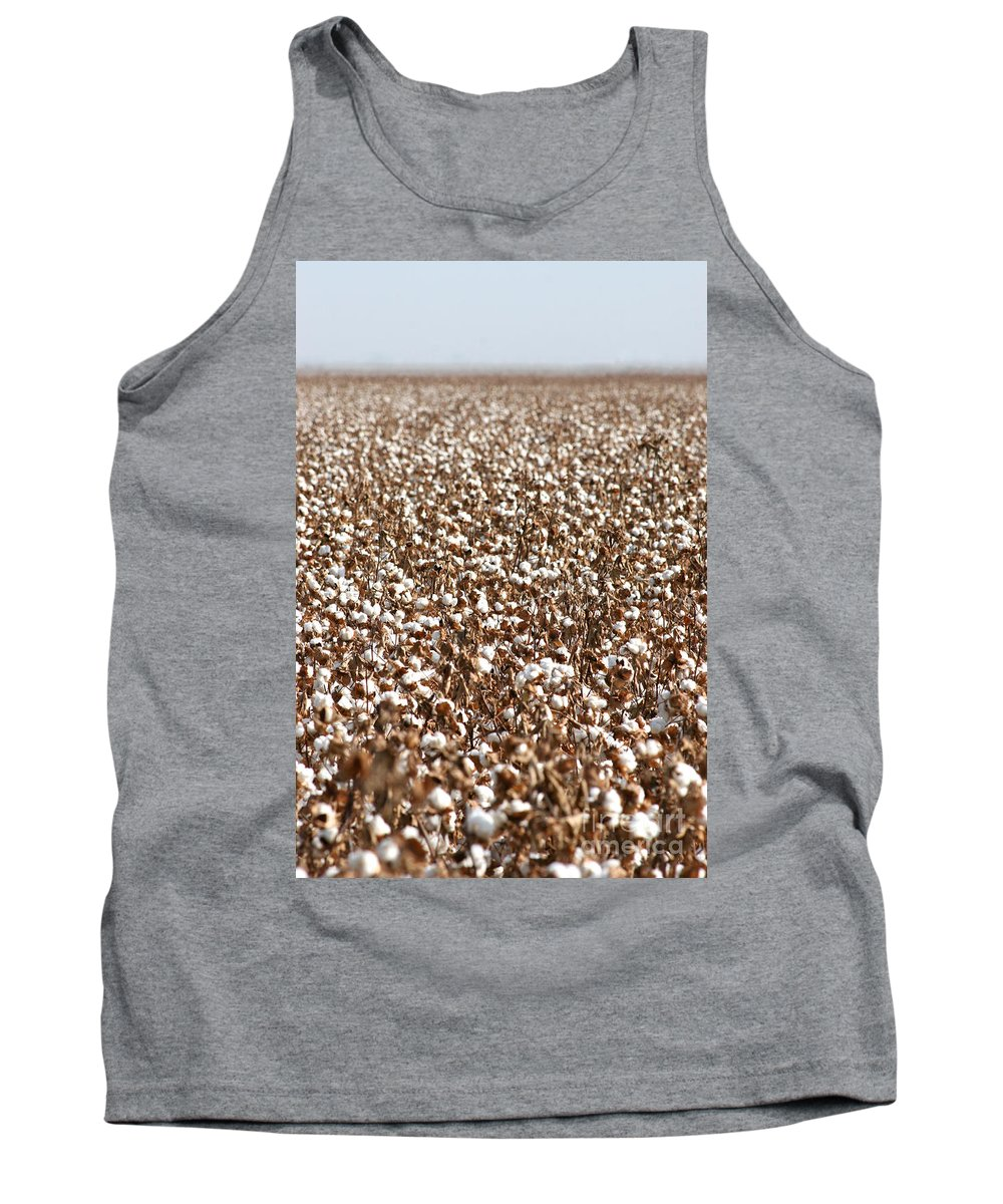 Cotton Photographs Tank Top featuring the photograph Cotton Forever by Brooke Roby