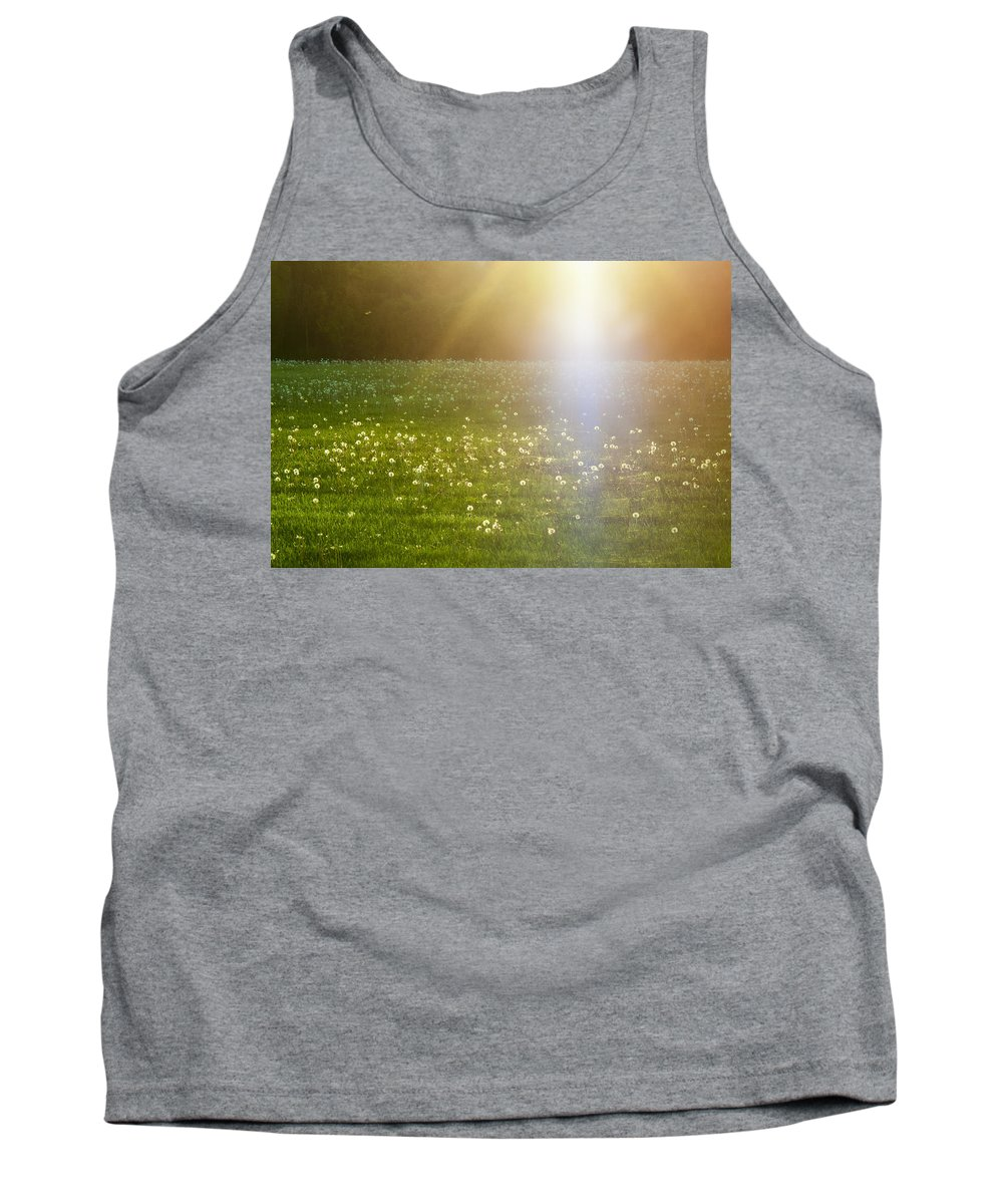 Nature Tank Top featuring the photograph Dandelion And Meadows In Back-light by Jiayin Ma