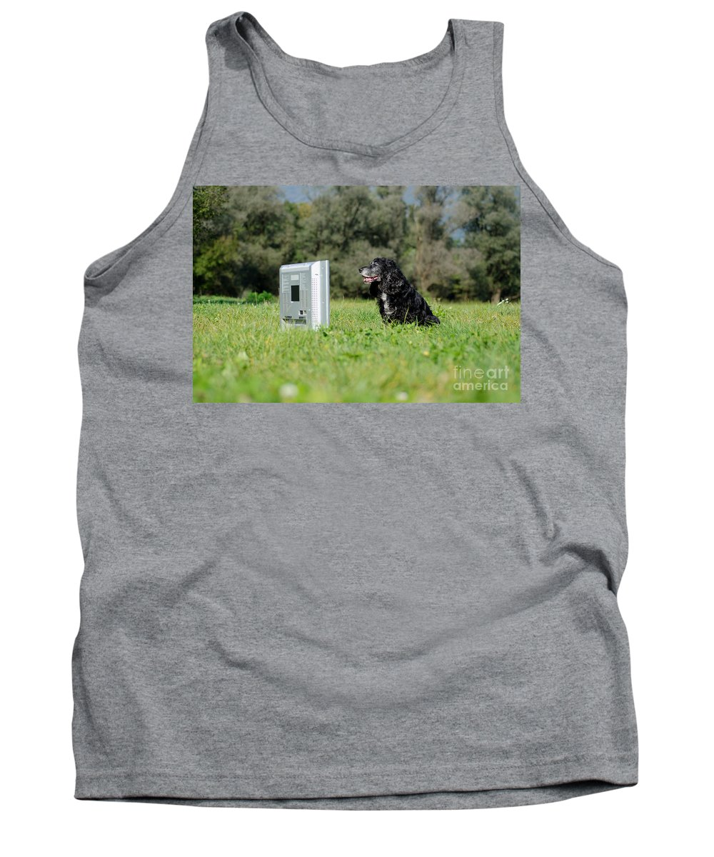 Dog Tank Top featuring the photograph Dog Watching Tv by Mats Silvan