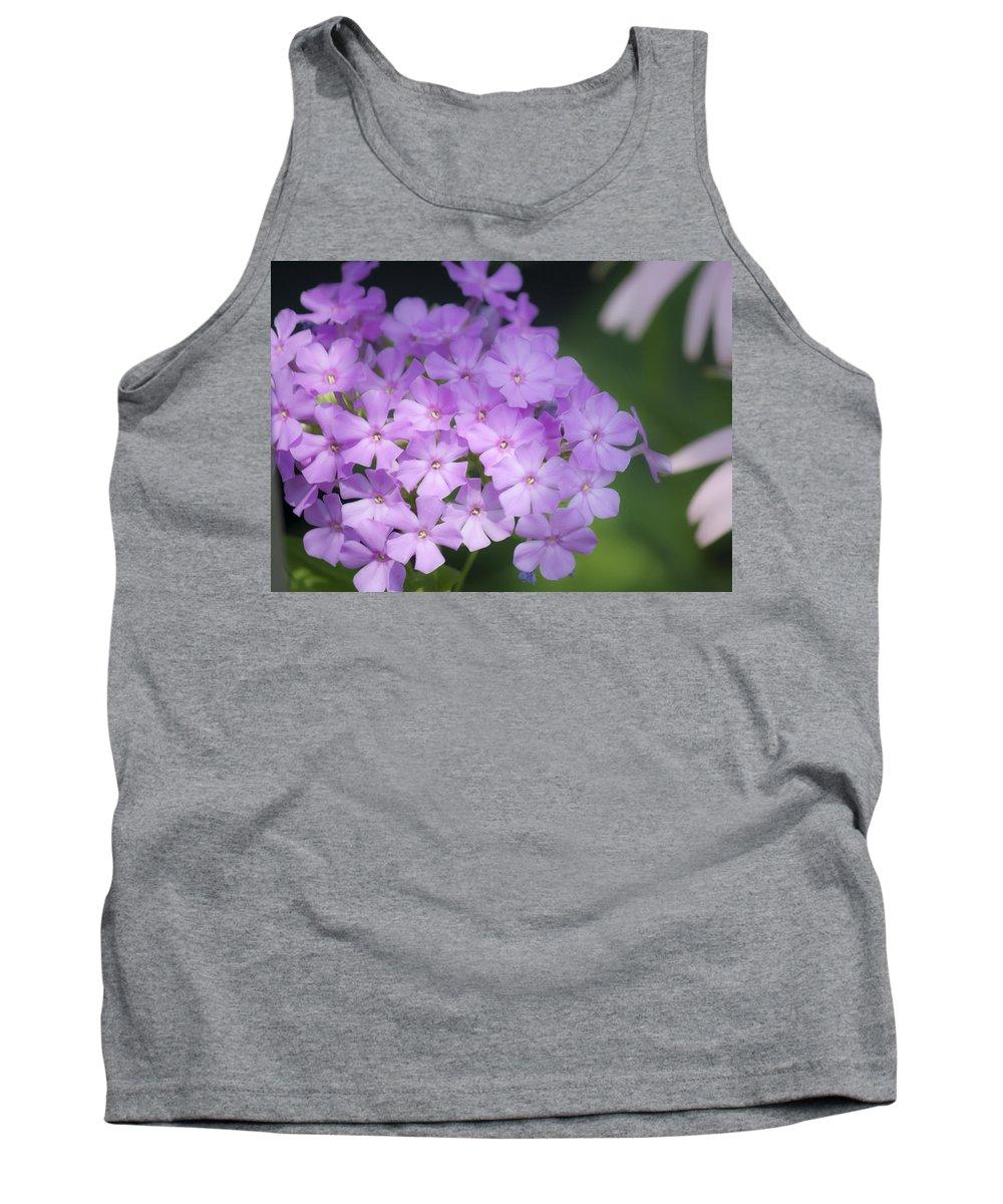Phlox Tank Top featuring the photograph Dreamy Lavender Phlox by Teresa Mucha