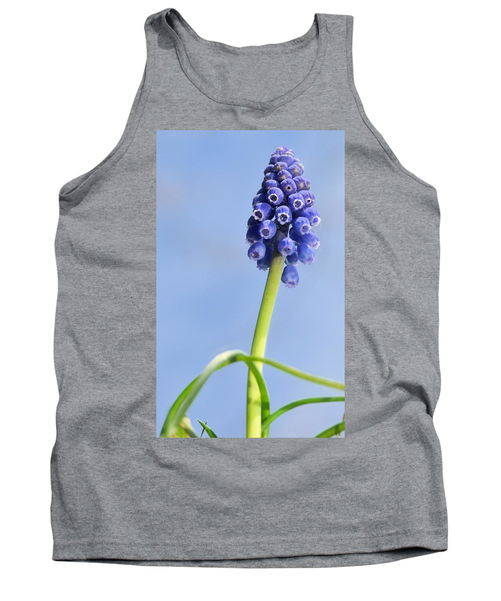 J.d. Grimes Tank Top featuring the photograph Grape Hyacinth by JD Grimes