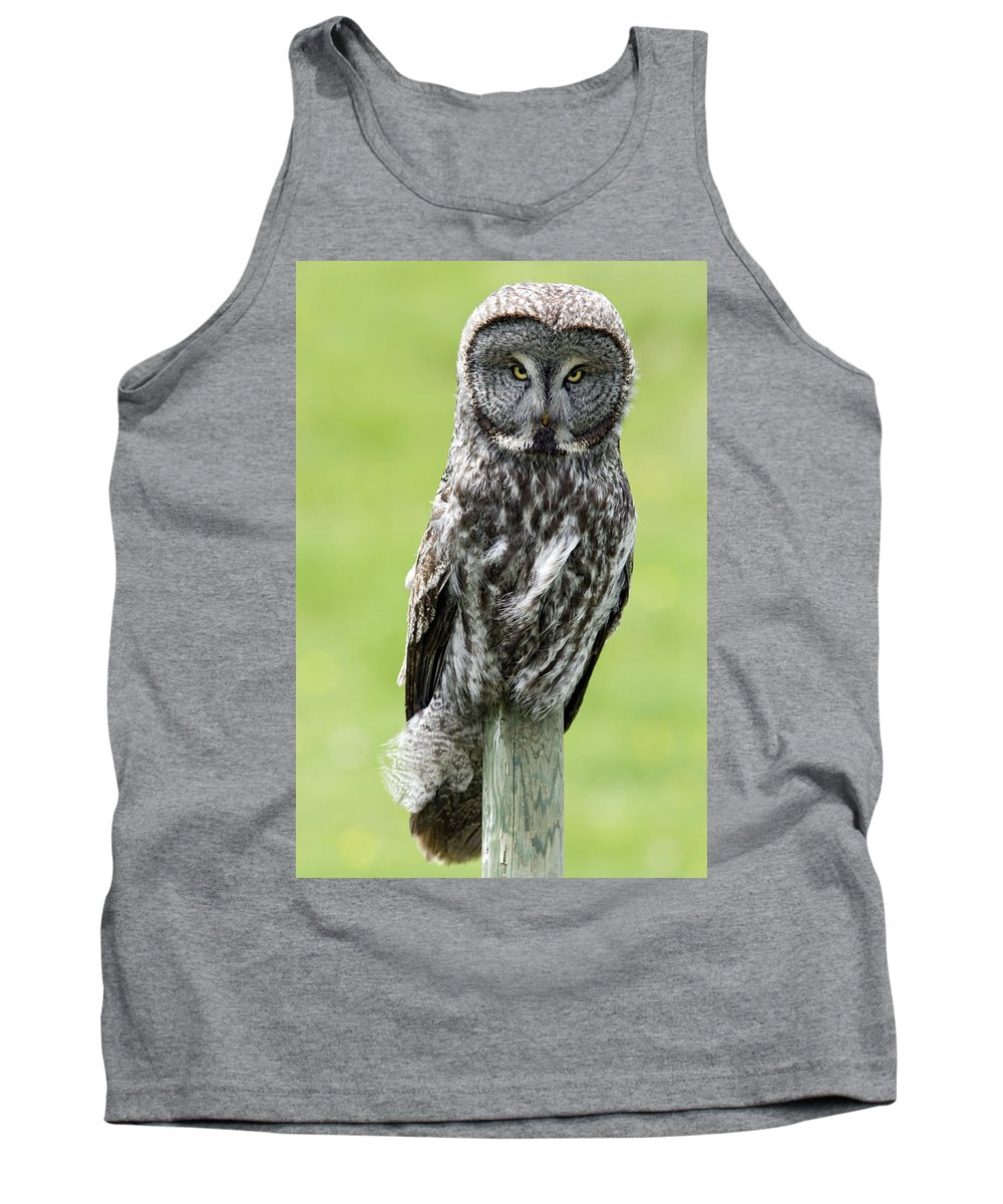Light Tank Top featuring the photograph Great Grey Owl, Water Valley, Alberta by Darwin Wiggett