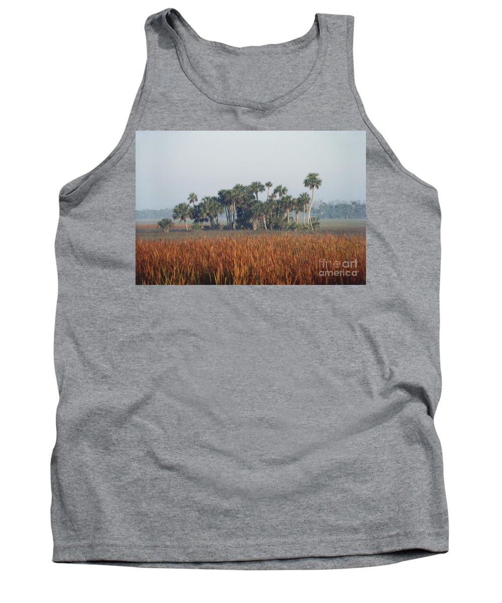 Nature Tank Top featuring the photograph Hammock, Everglades National Park by Robert Ashworth