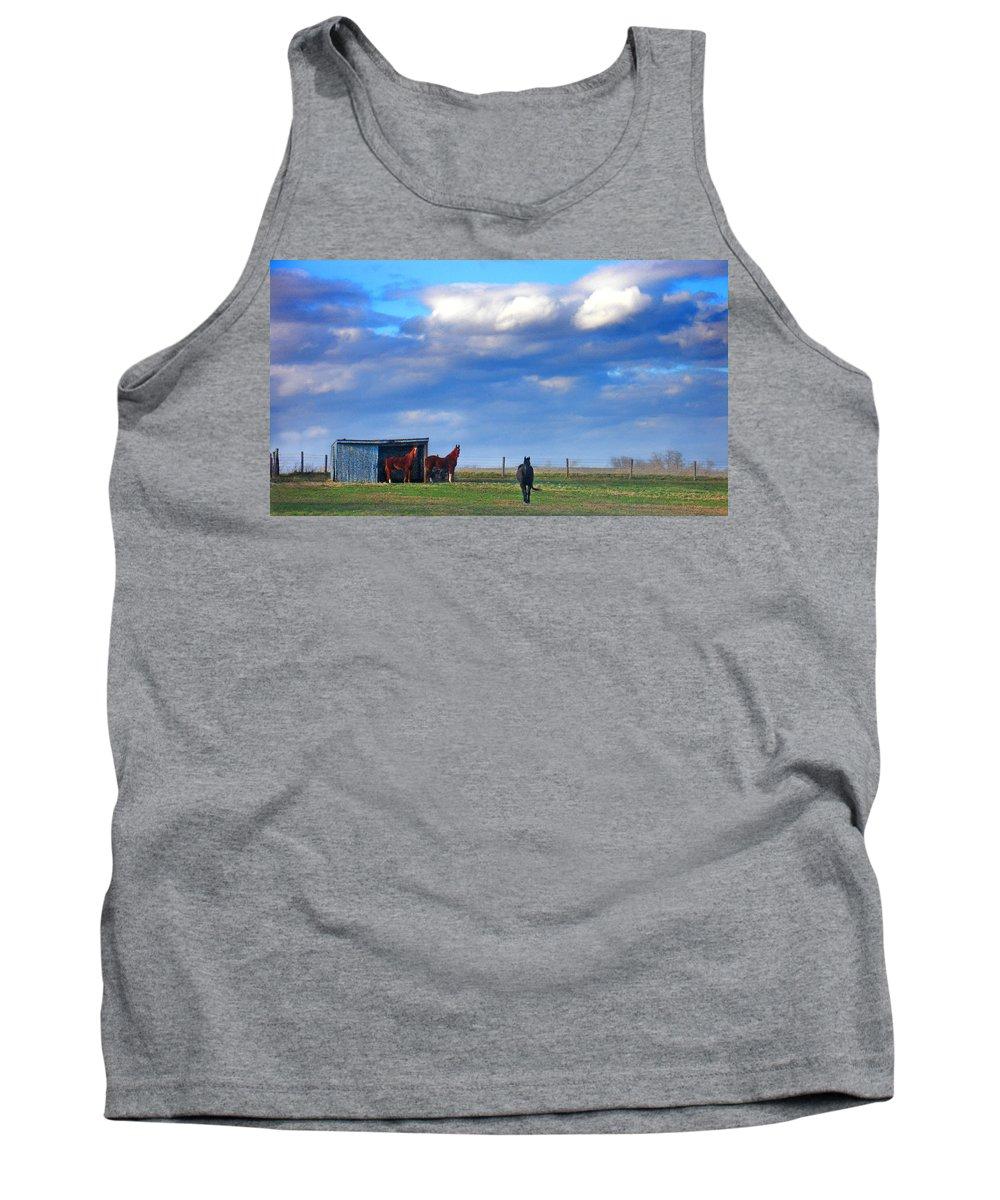 Landscape Tank Top featuring the photograph Horse Ranch Landscape by Steve Karol