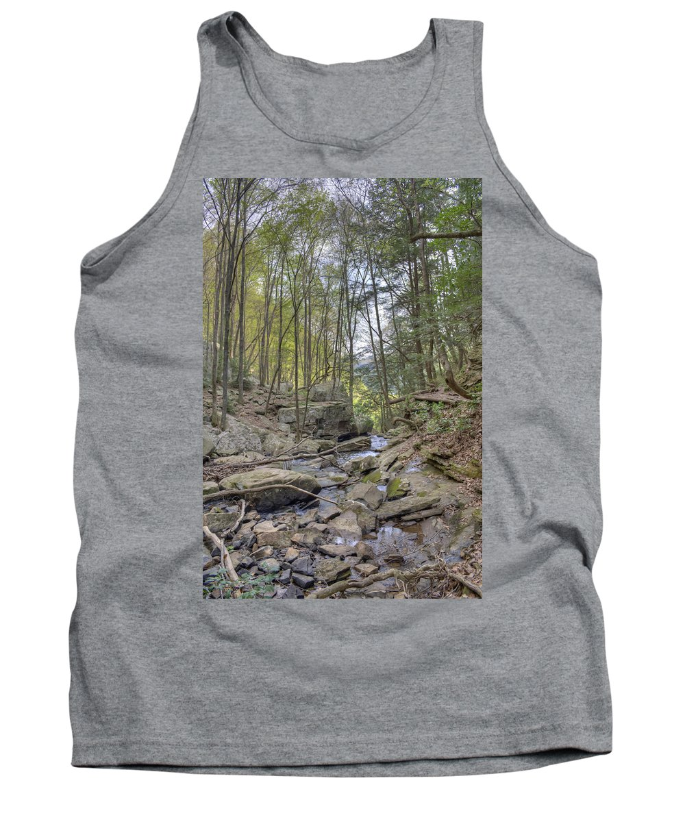 Cloudland Canyon Tank Top featuring the photograph Little Stream by David Troxel