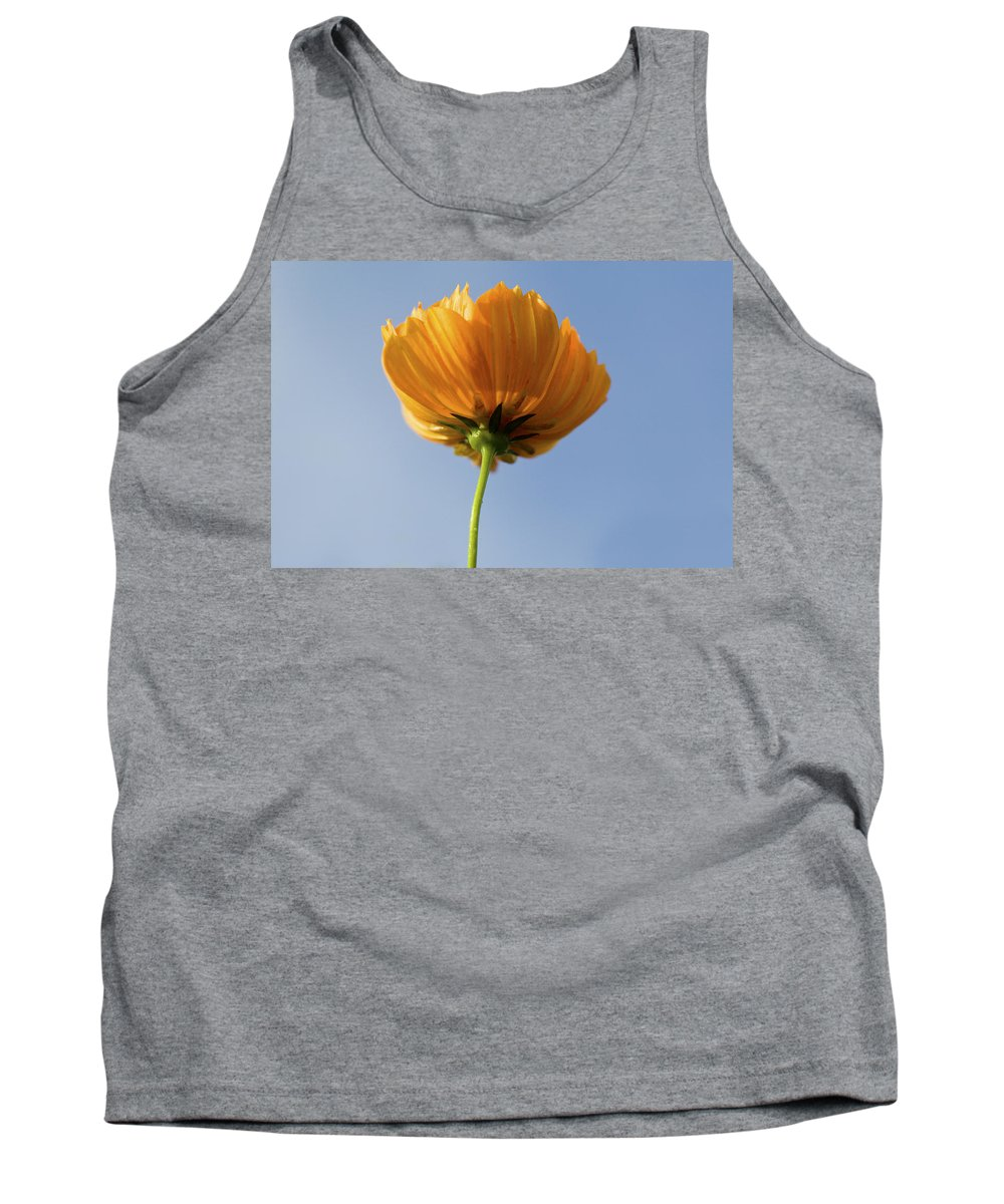 Cosmos Tank Top featuring the photograph Orange Cosmos Too by Rich Franco