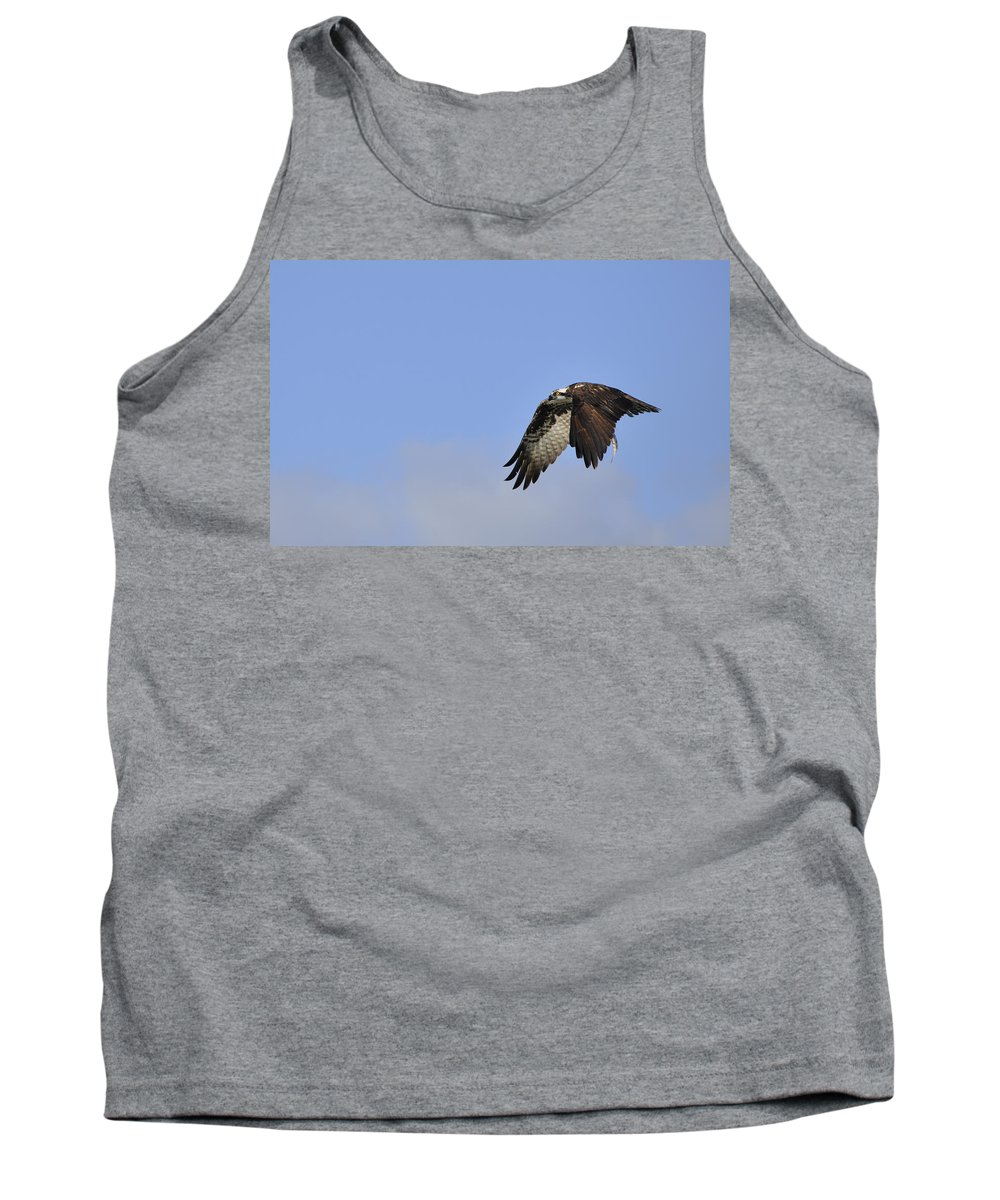 Osprey Tank Top featuring the photograph Osprey On The Move by Christine Stonebridge