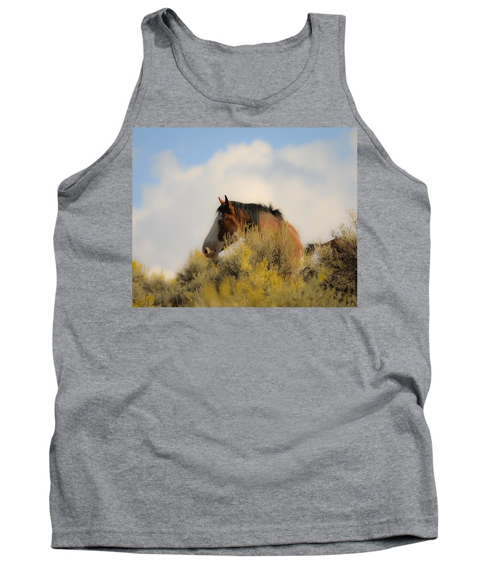 White Horses Tank Top featuring the photograph Over The Hill Pinto by Steve McKinzie