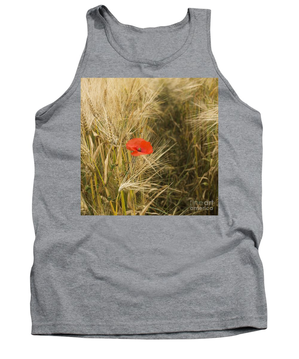 Vulgare Tank Top featuring the photograph Poppies In A Field Of Barley  by Bernard Jaubert