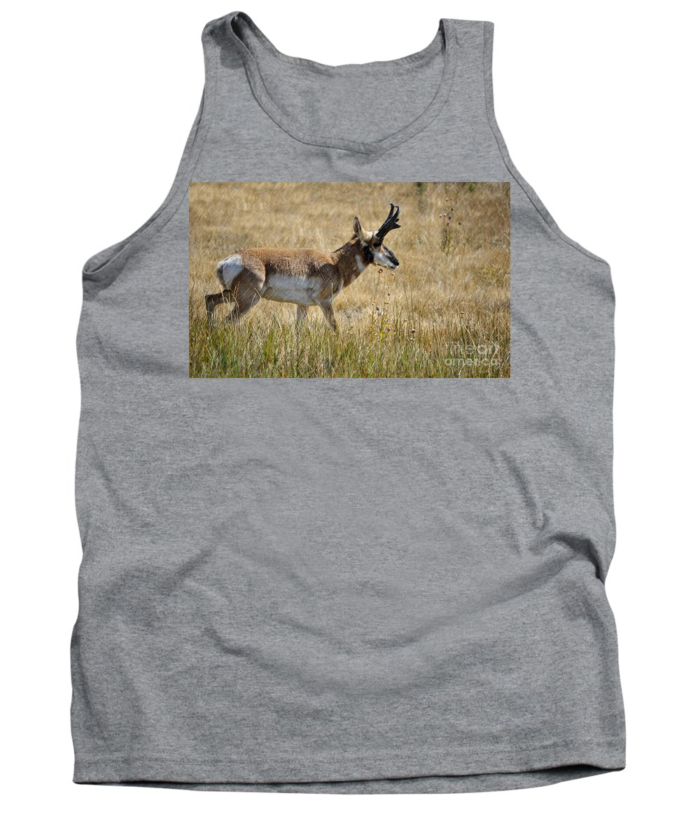 Pronghorn Tank Top featuring the photograph Summer Pronghorn Rain by Donna Greene