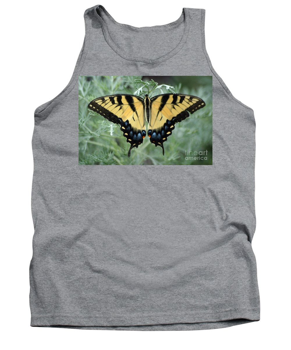 Butterfly Tank Top featuring the photograph The Beauty Of A Butterfly by Living Color Photography Lorraine Lynch