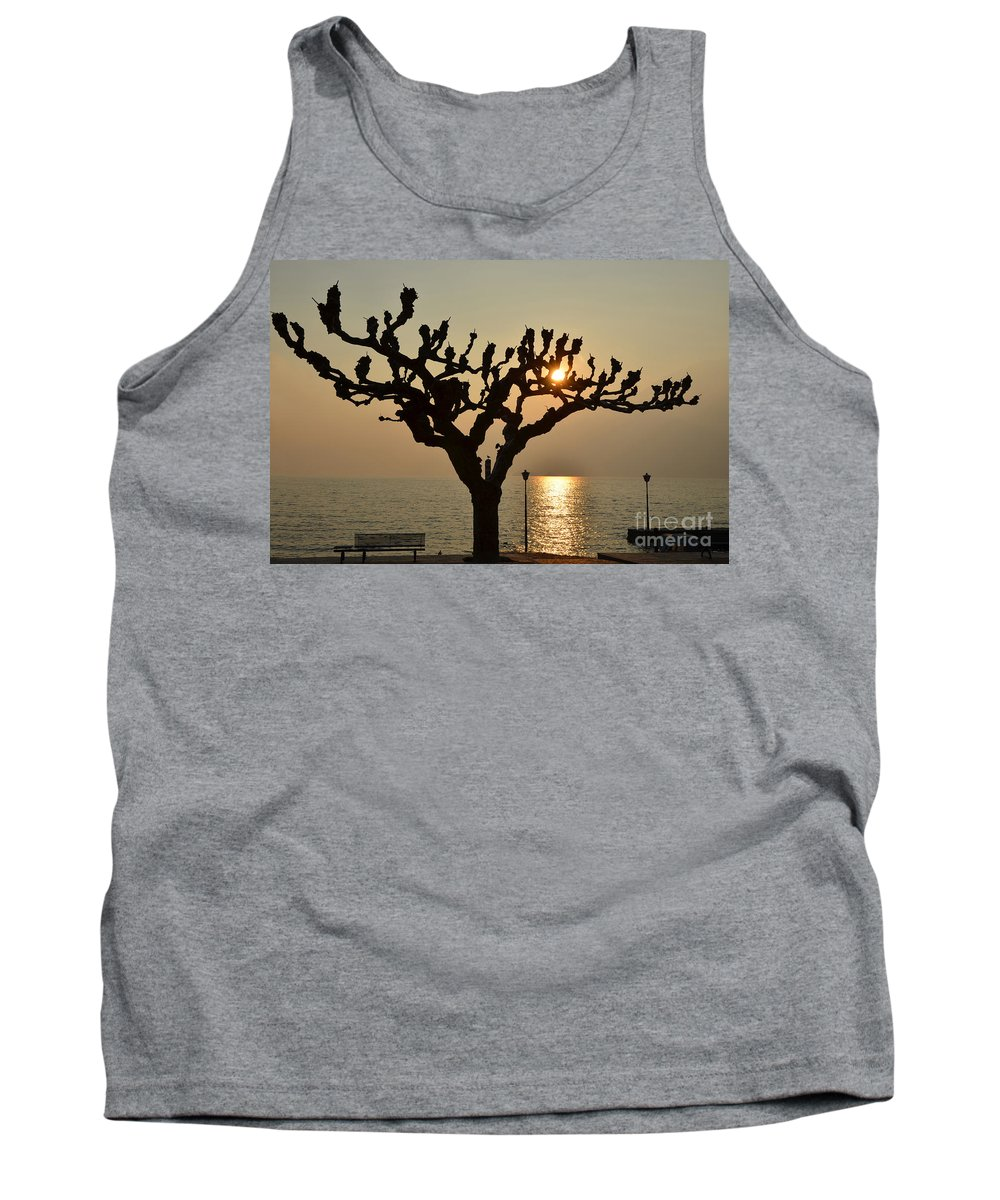 Tree Tank Top featuring the photograph Tree In A Foggy Sunset by Mats Silvan