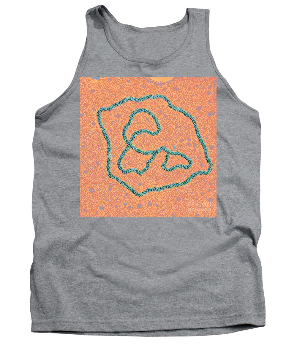 Biology Tank Top featuring the photograph Viral Dna Rings by Science Source