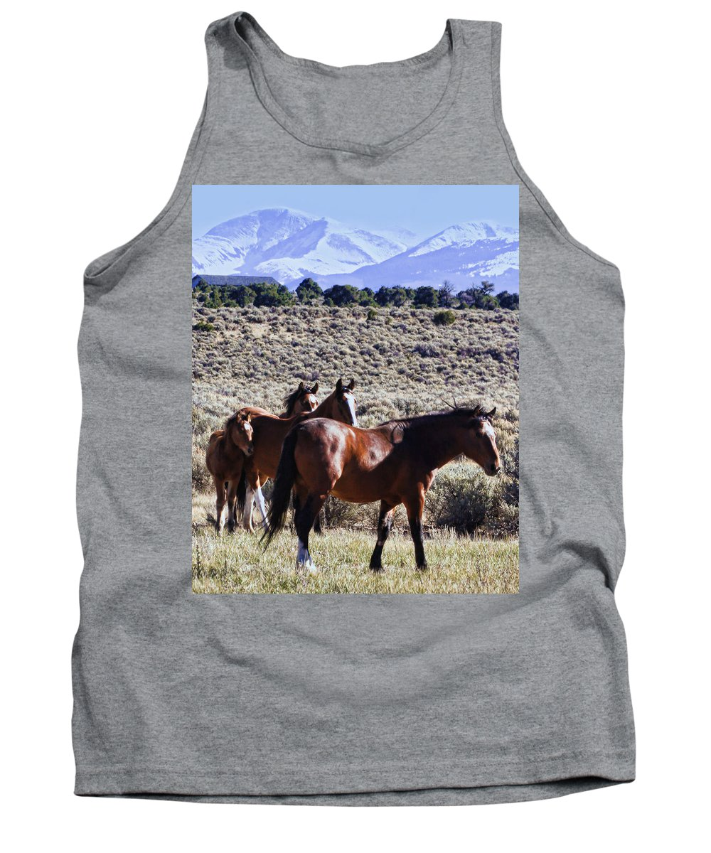 Horse Tank Top featuring the photograph Wild Bunch by Terry Fiala