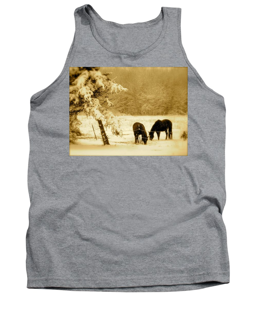 Landscape Tank Top featuring the photograph Winter Grazing by Arthur Barnes