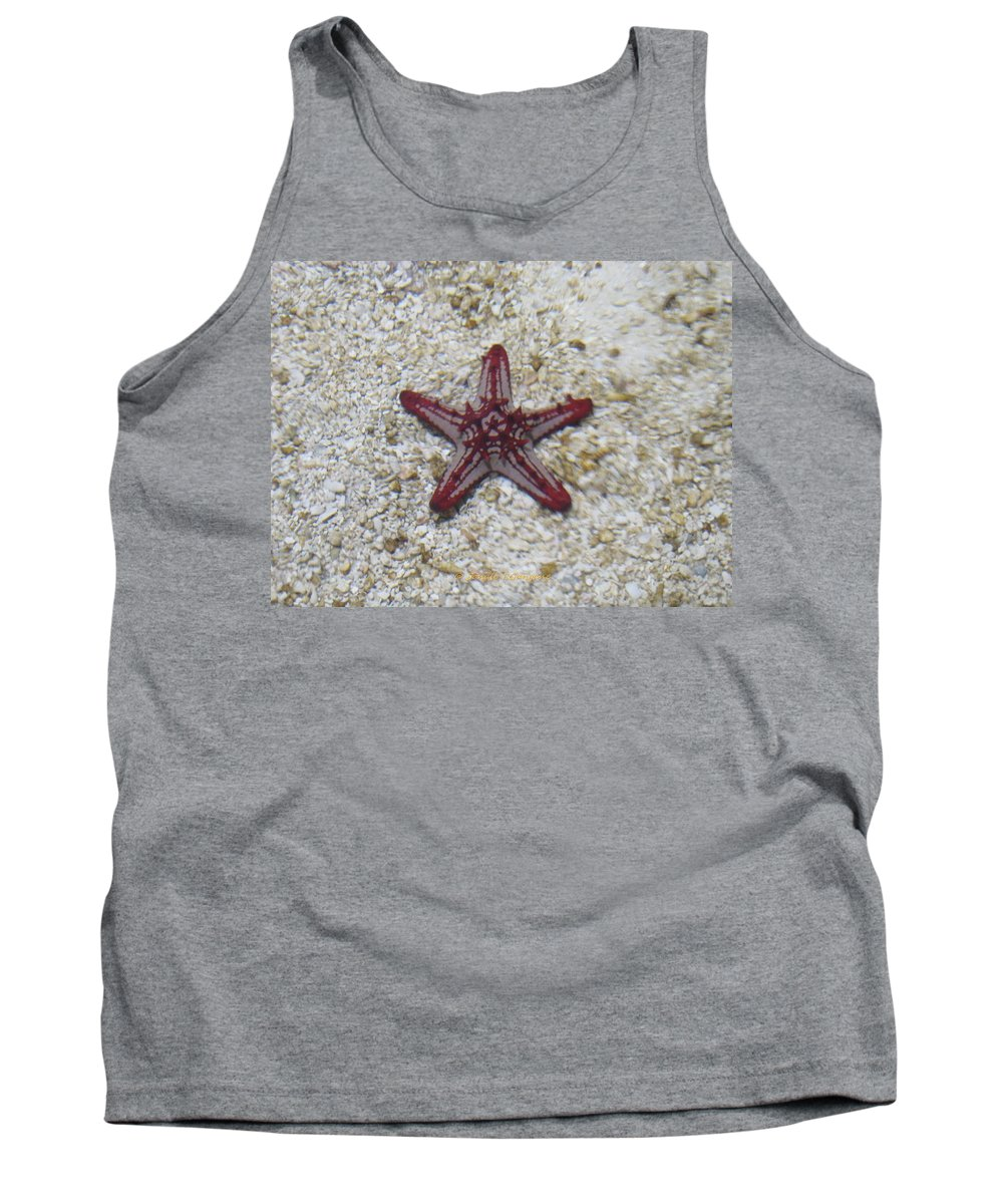 Beauty Star Tank Top featuring the photograph Wonder Star Fish by Sonali Gangane