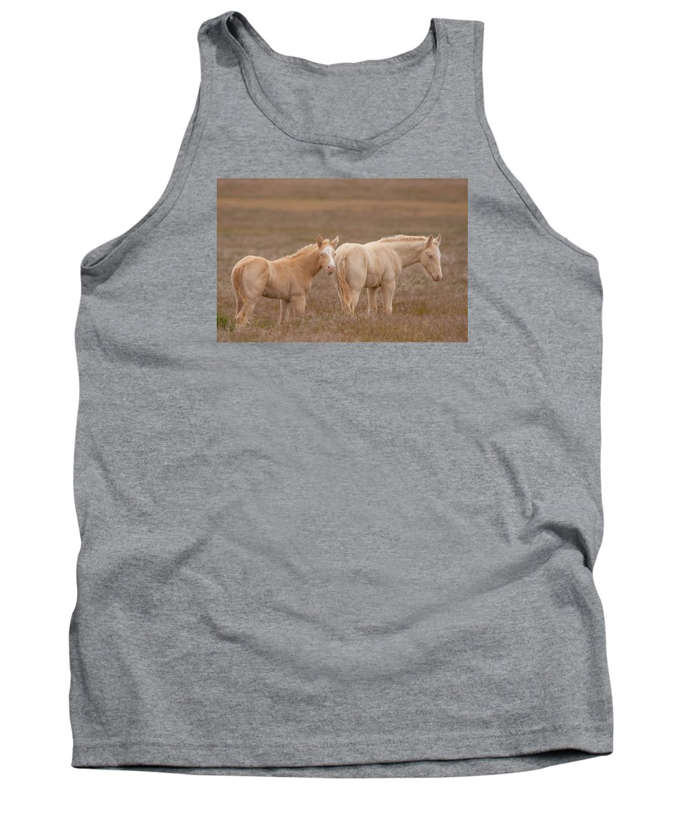 Wild Horse Tank Top featuring the photograph Cremello Brothers by Kent Keller