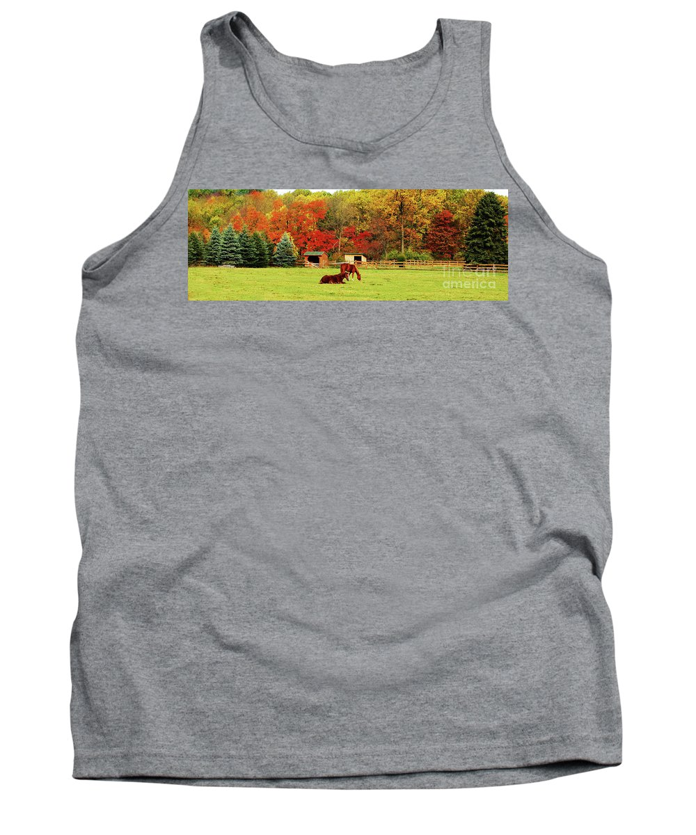 Horse Tank Top featuring the photograph Lazy Autumn Day by Lori Tambakis