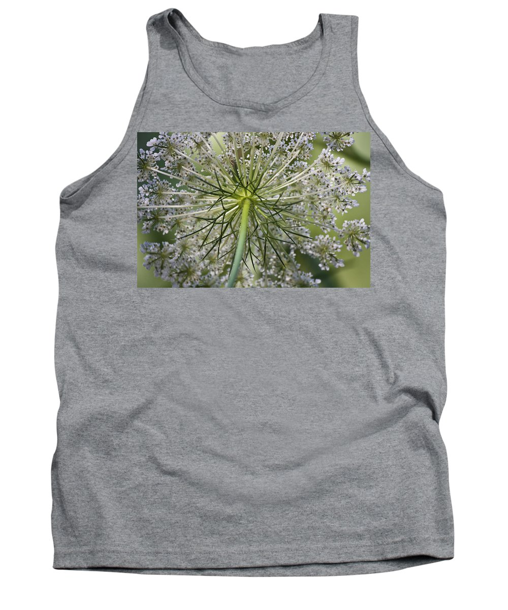 Queen Anne's Lace Tank Top featuring the photograph Look Up by Teresa Mucha