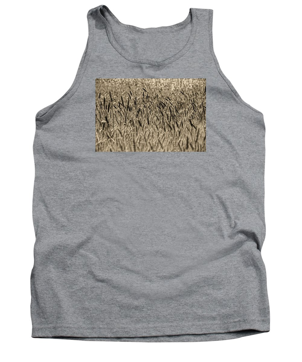Tank Top featuring the photograph Harvest Time by Deb Cohen
