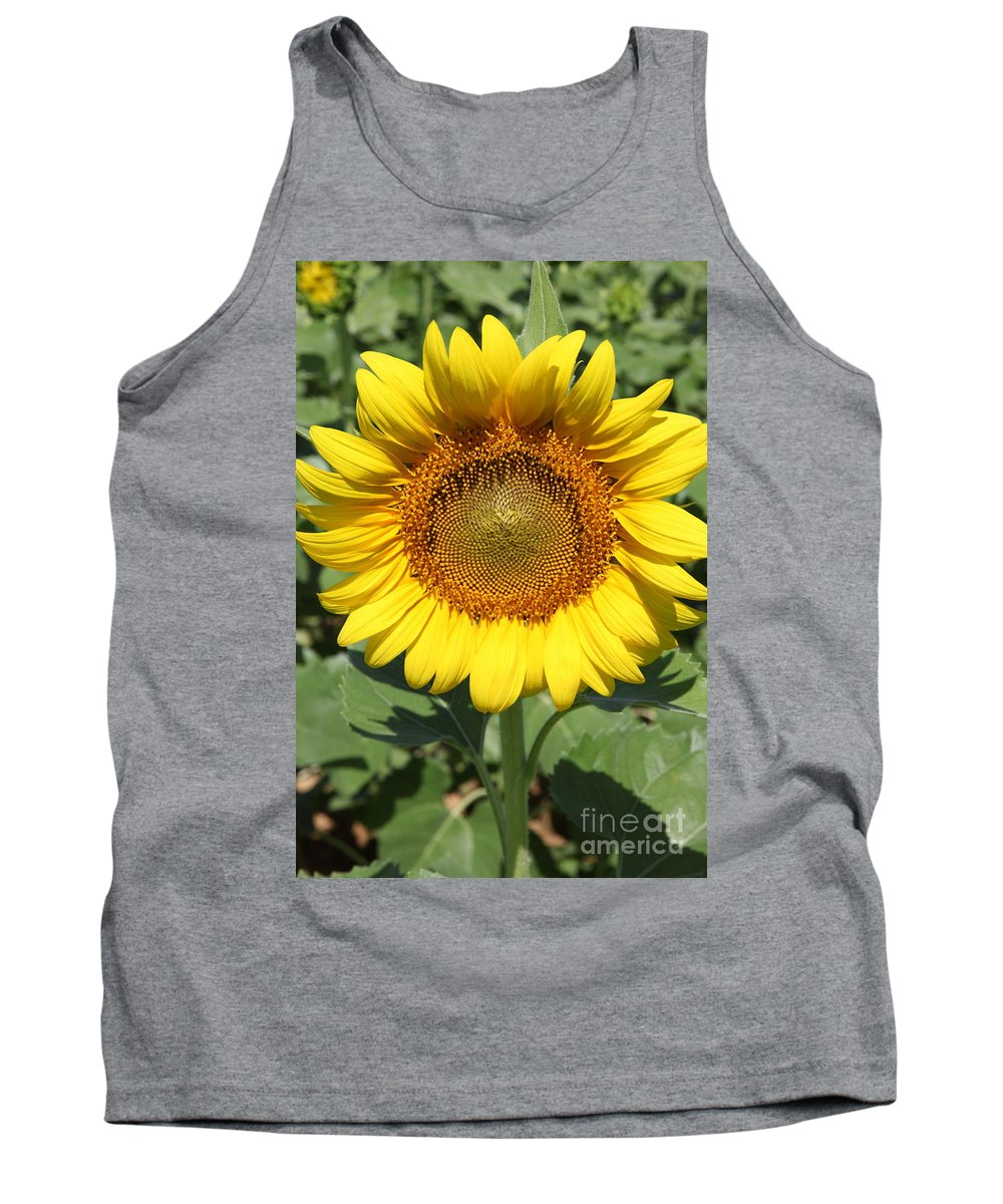 Sunflowers Tank Top featuring the photograph Sunflower 09 by Amanda Barcon