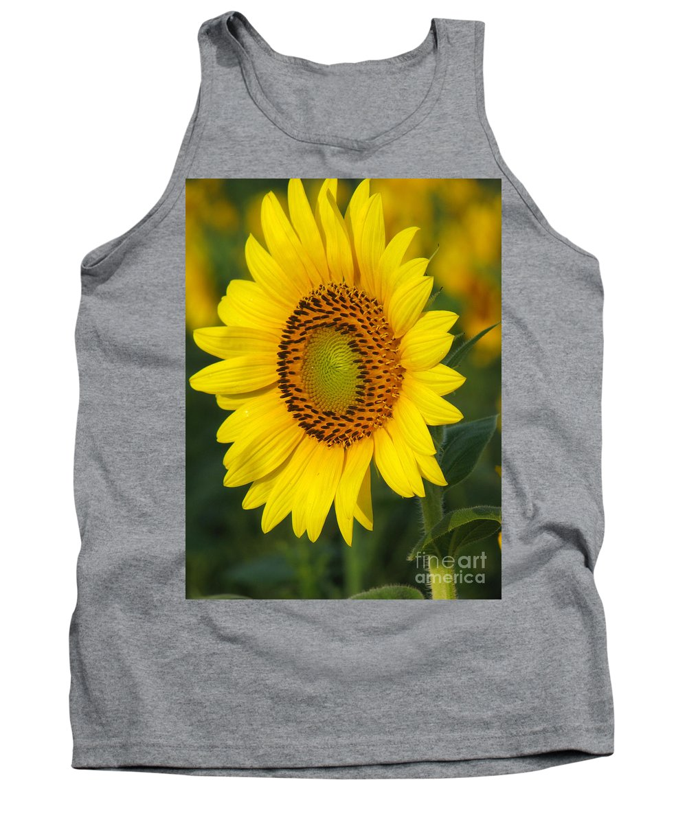 Sunflowers Tank Top featuring the photograph Sunflower by Amanda Barcon
