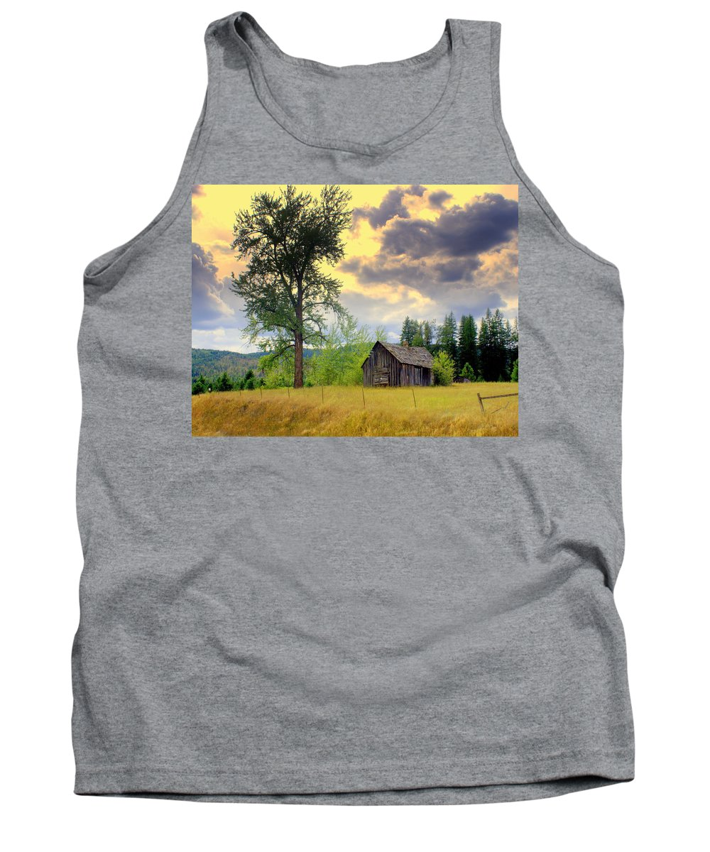 Washington Tank Top featuring the photograph Washington Homestead by Marty Koch