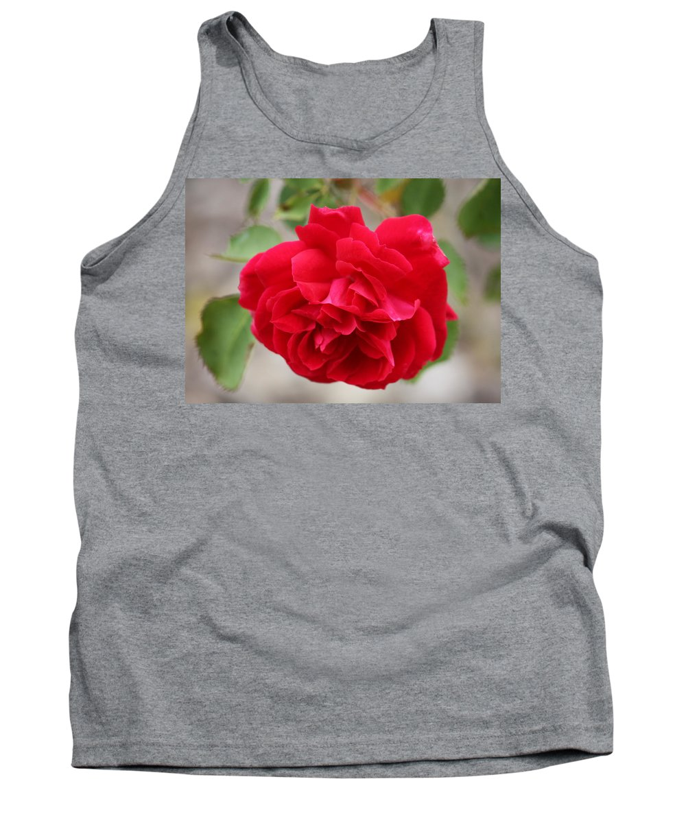 Red Rose Tank Top featuring the photograph Red Rose by Carol Groenen