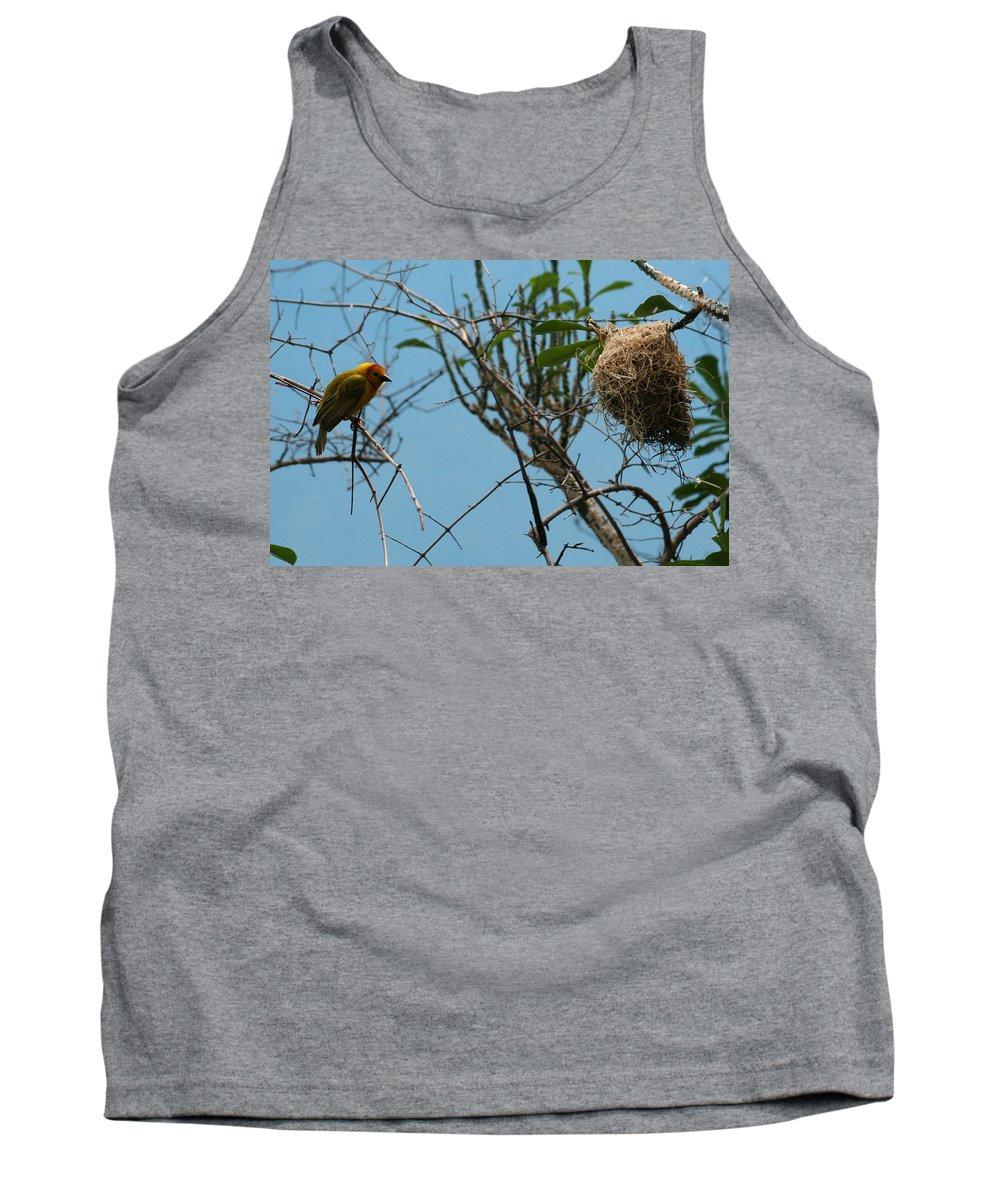 Bird Tank Top featuring the photograph A Bird In 3d by Paul SEQUENCE Ferguson       sequence dot net