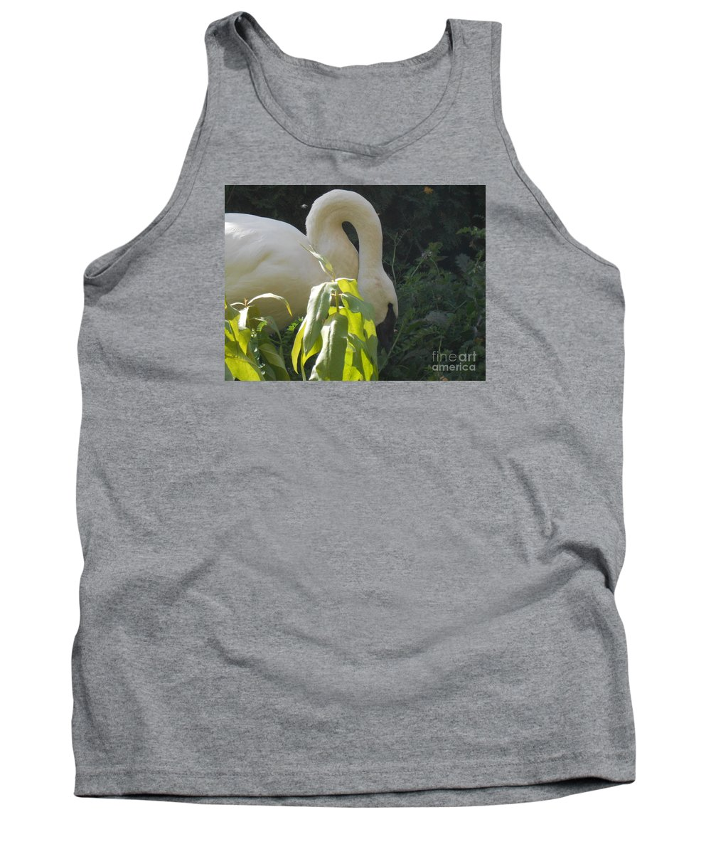 Trumpeter Swan Tank Top featuring the photograph A Little Sun by LKB Art and Photography