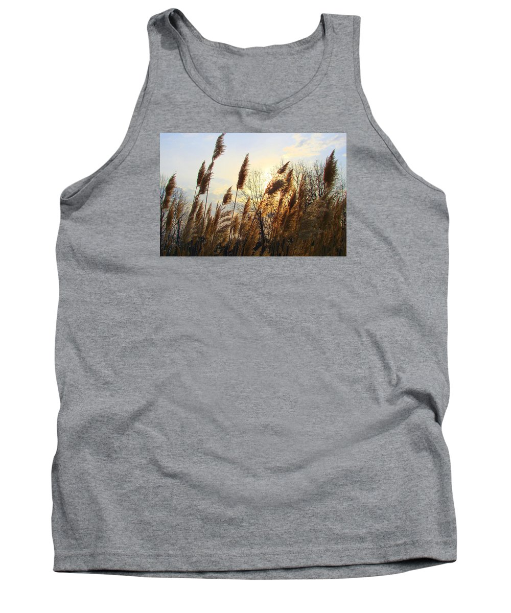Pampasgrass Tank Top featuring the photograph Amber Waves Of Pampas Grass by J R Seymour