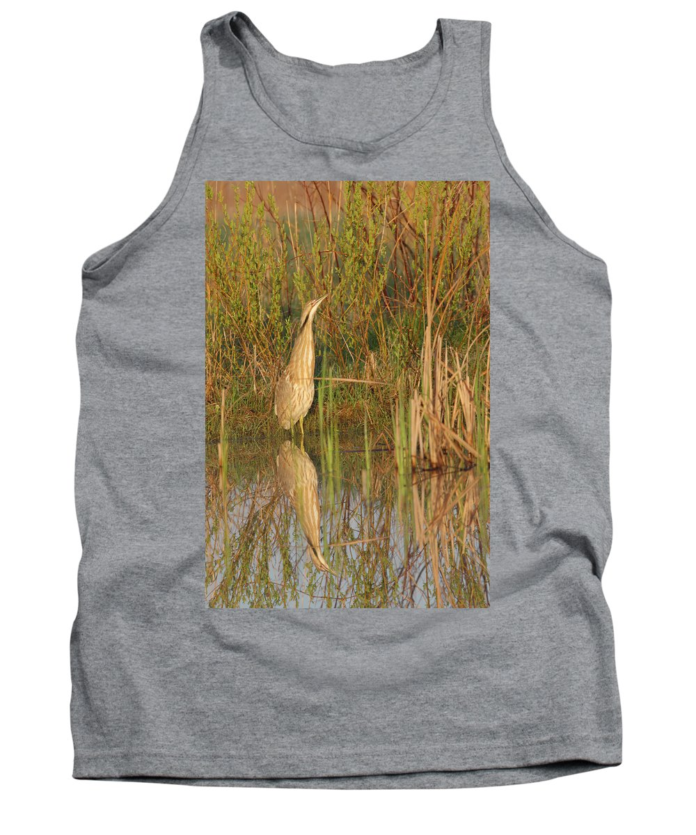 Waterfowl Tank Top featuring the photograph American Bittern Close To Shore by Mark Wallner