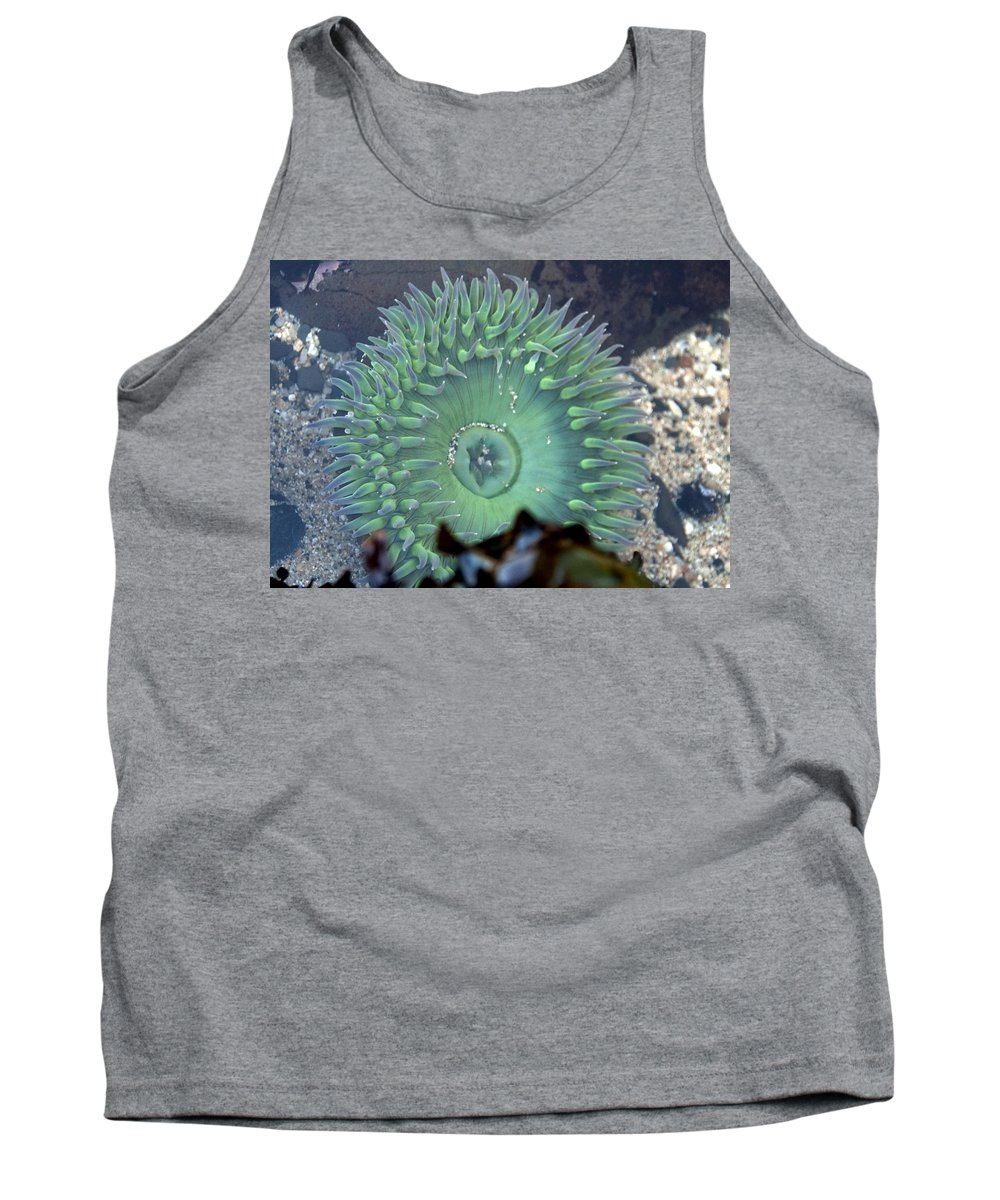 Anemone Tank Top featuring the photograph Anemone by Steven Natanson