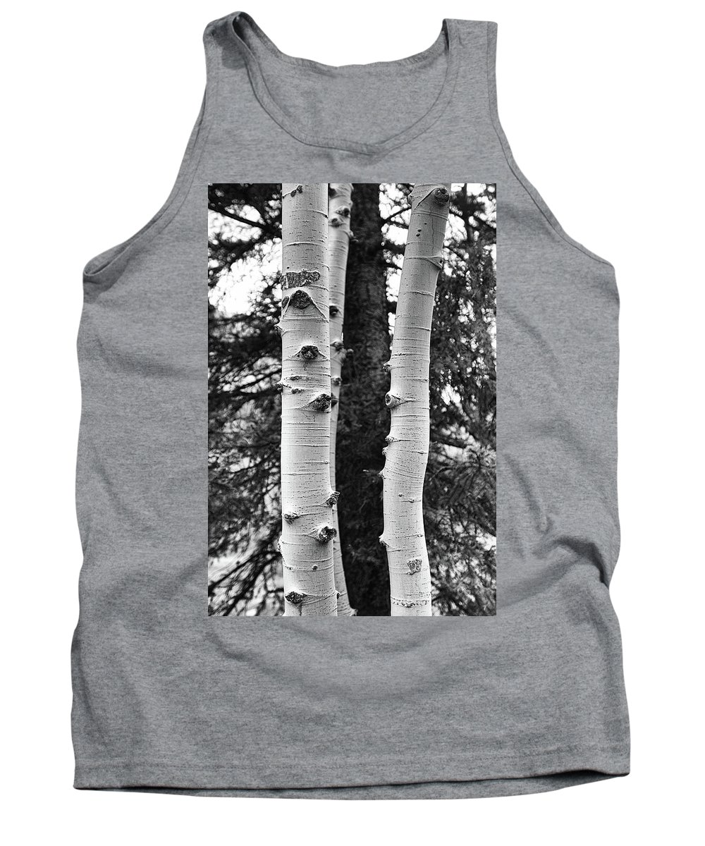 Aspen Tank Top featuring the photograph Aspen Is Watching by Al Beard