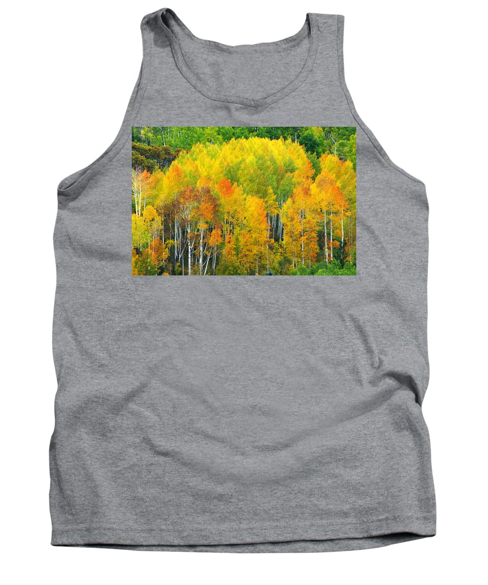 Horizontal Tank Top featuring the photograph Autumn Aspens by Eggers Photography