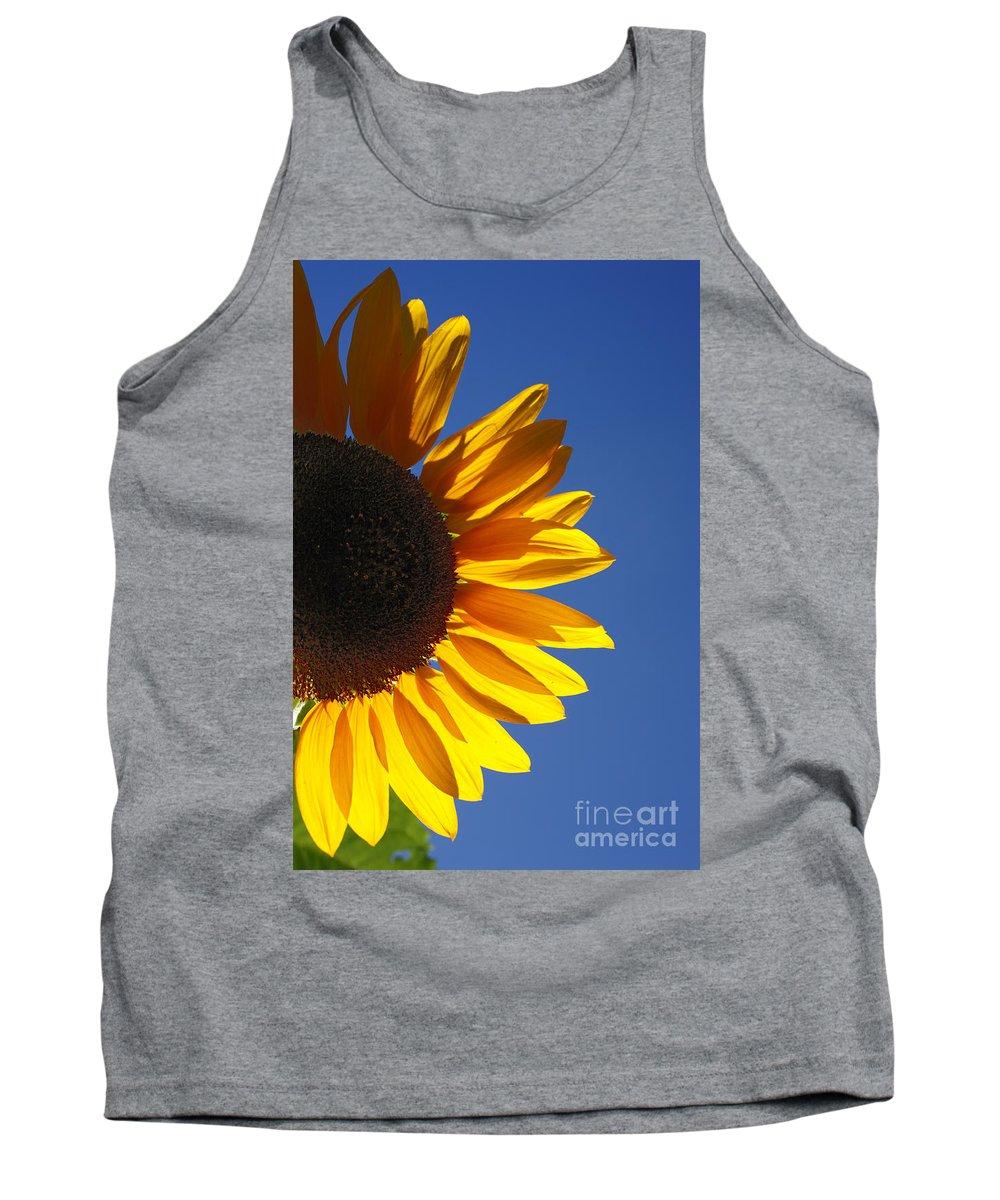 Back Light Tank Top featuring the photograph Backlit Sunflower by Gaspar Avila