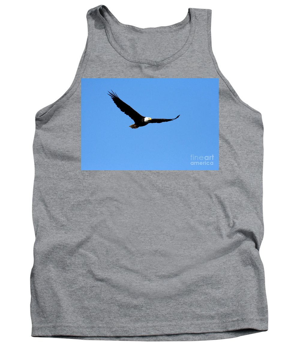 Eagle Tank Top featuring the photograph Bald Eagle II by Thomas Marchessault