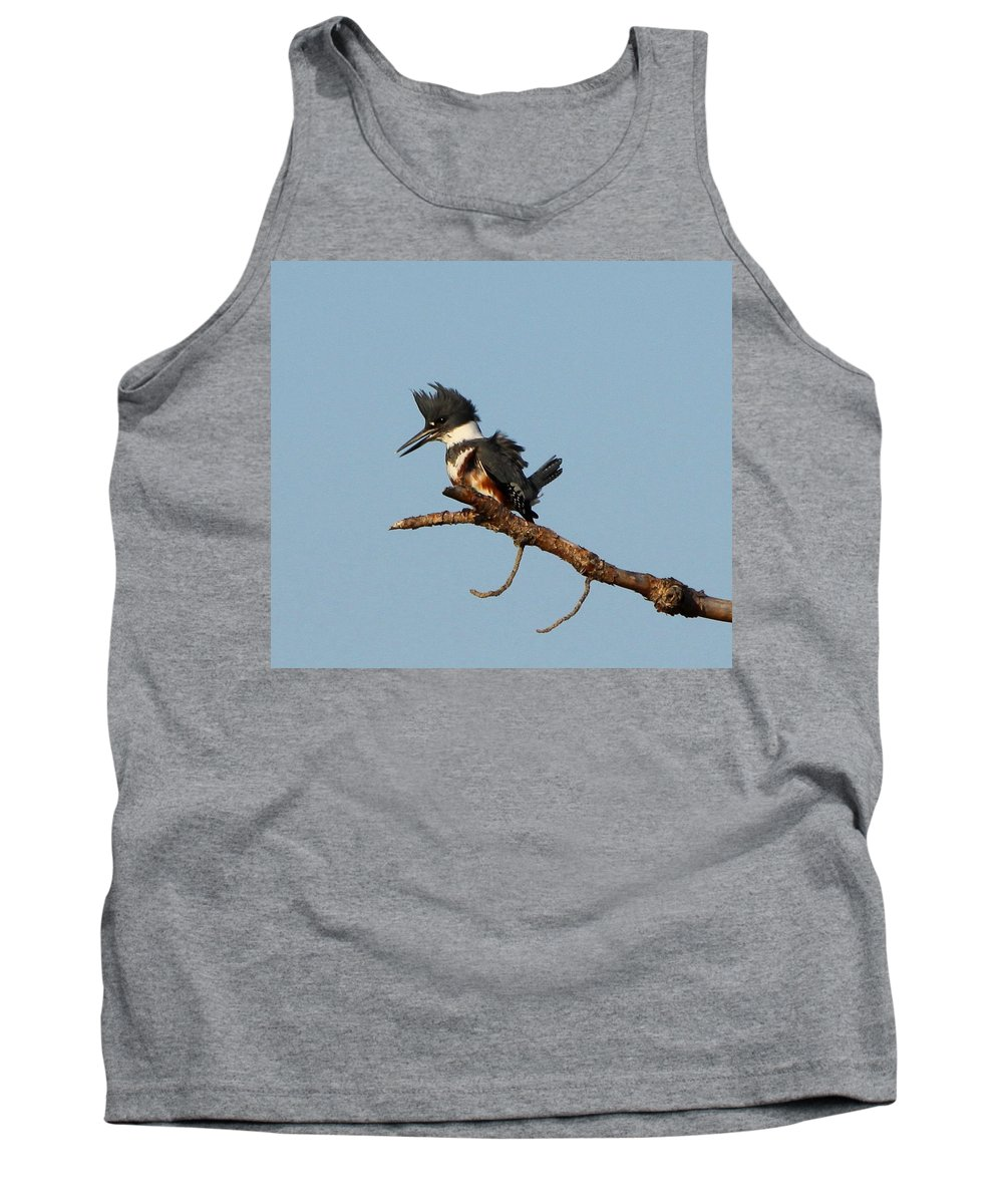 Belted Kingfisher Tank Top featuring the photograph Belted Kingfisher by Barbara Bowen