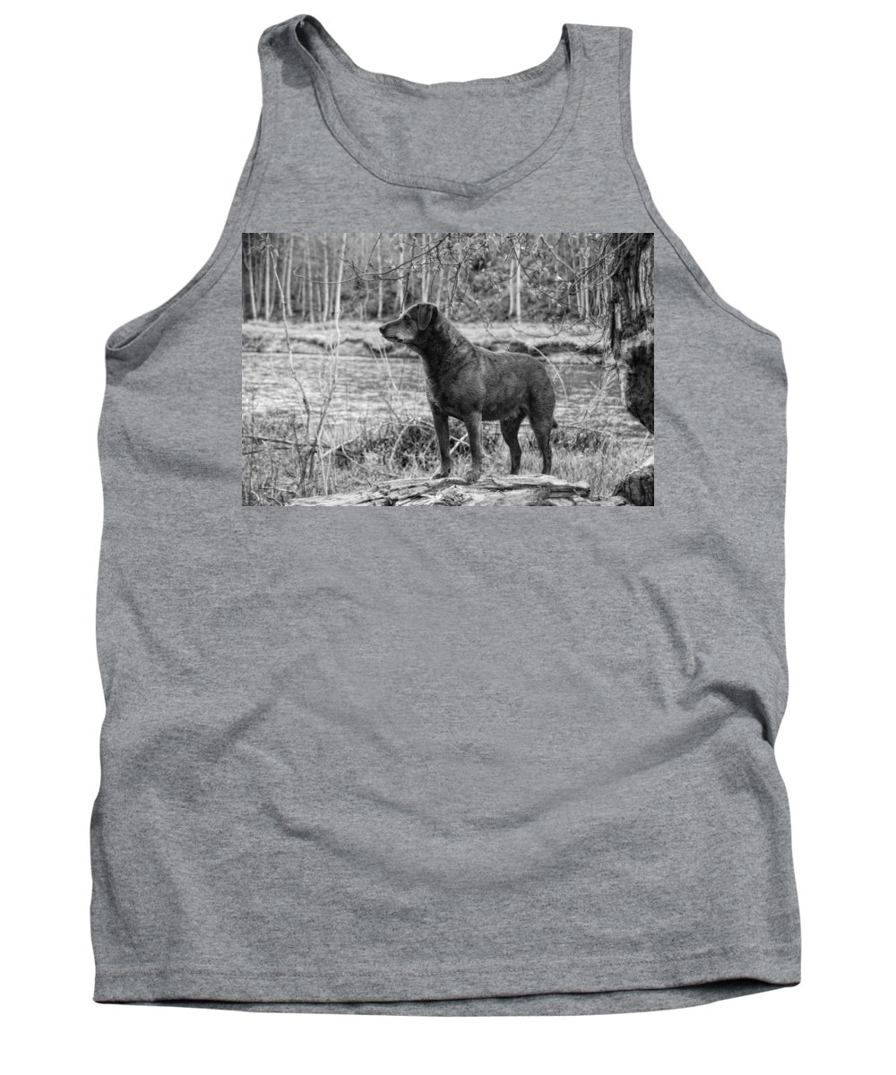 Dog Tank Top featuring the photograph Big Red by Donna Blackhall