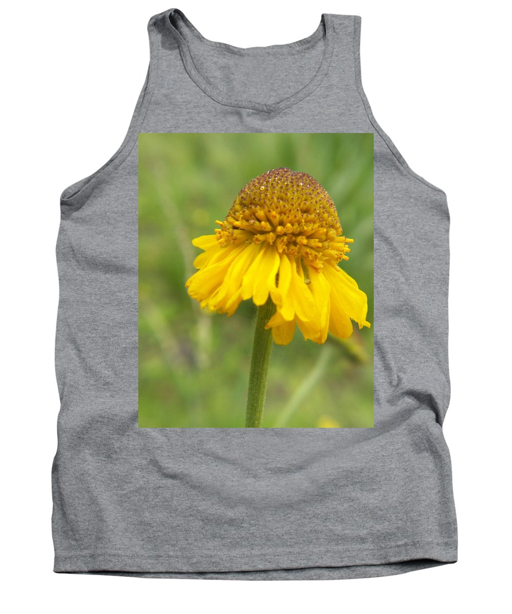 Flower Tank Top featuring the photograph Bigelow by Amy Fose
