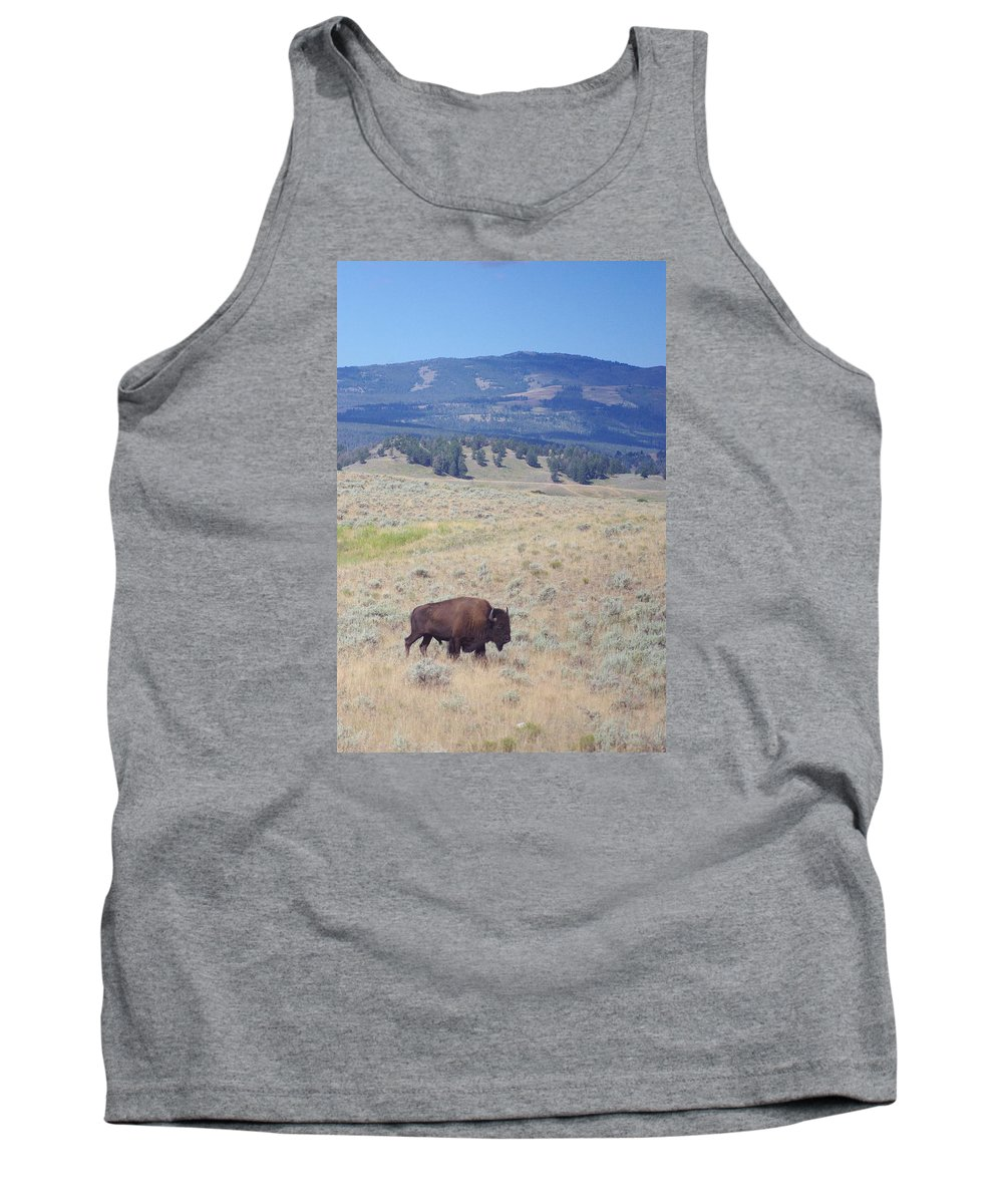 Photography Tank Top featuring the photograph Bison Trail by Michelle Fairchild