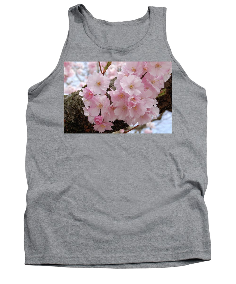 Cherry Blossoms Tank Top featuring the photograph Blossoms On Bark by Michele Broadfoot
