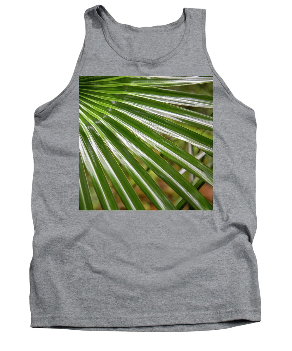 Australia Tank Top featuring the photograph Bold Fronds 4 by Stuart Mackenzie