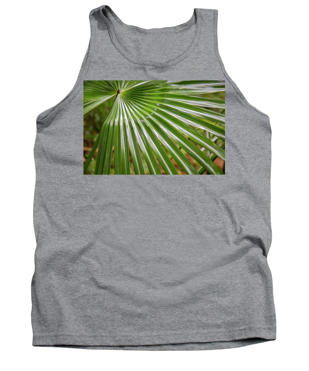 Australia Tank Top featuring the photograph Bold Fronds 5 by Stuart Mackenzie