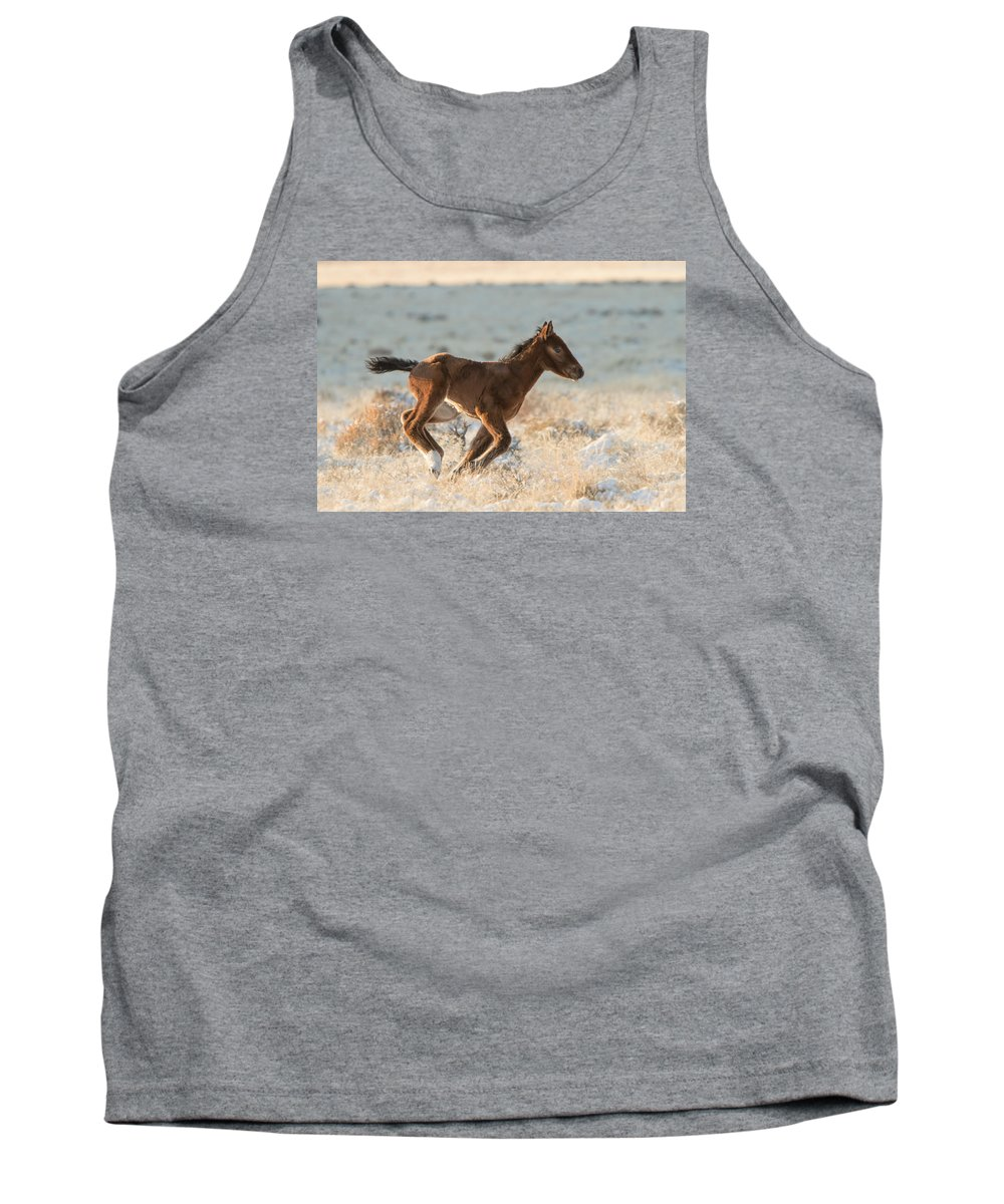 Wild Horse Tank Top featuring the photograph Burst Of Speed by Kent Keller