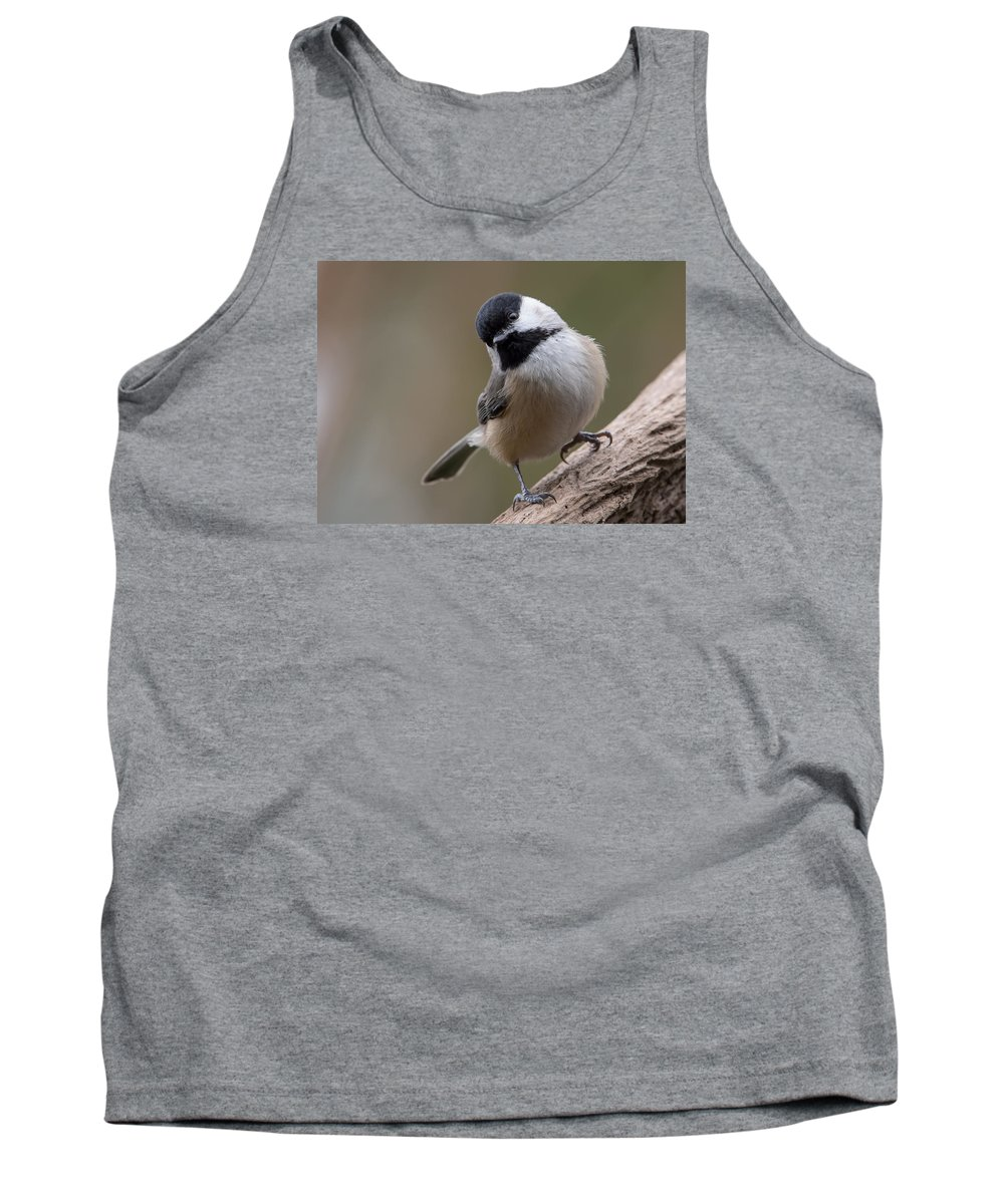 Carolina Chickadee Tank Top featuring the photograph Carolina Chickadee 2 by MCM Photography