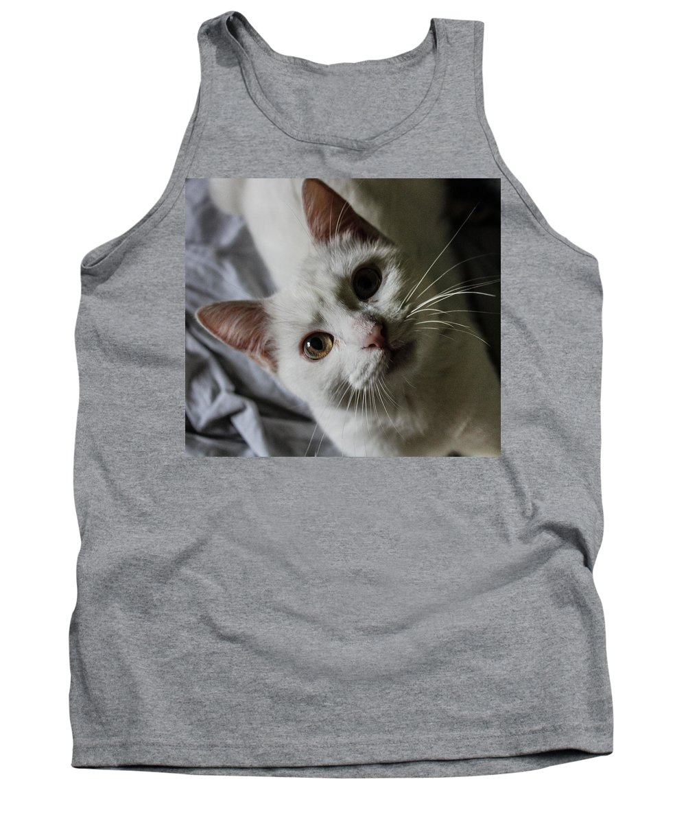 Cat Tank Top featuring the photograph Cat by Fae Scalmazzi