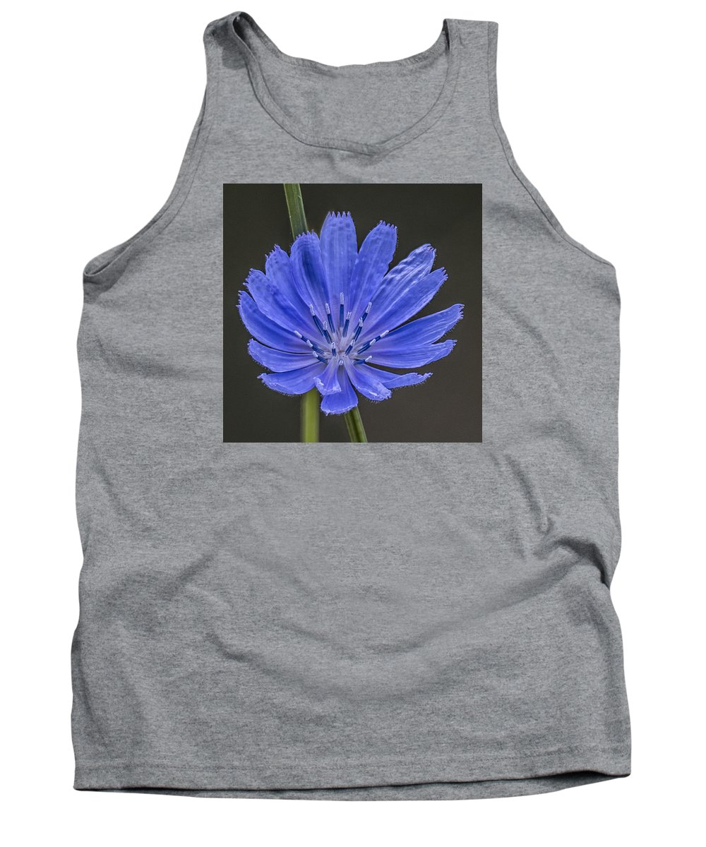 Chicory Tank Top featuring the photograph Chicory Flower by Sue Matsunaga