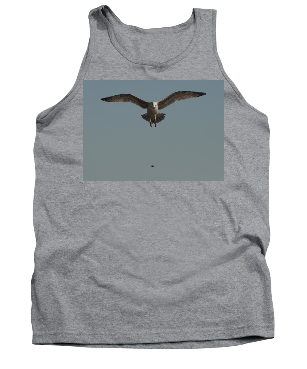 Seagull Tank Top featuring the photograph Clams For Dinner 2 by Steven Natanson