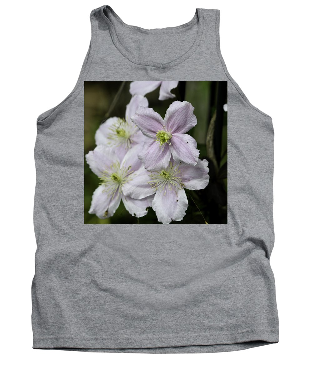 Clematis Tank Top featuring the photograph Clematis Montana Rubens Group by Teresa Mucha